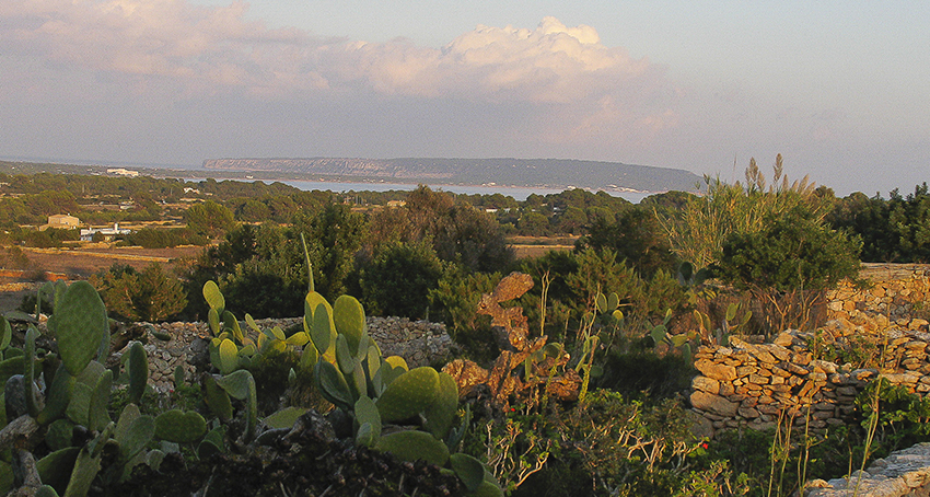 Adéu Formentera Blick Richtung la mola