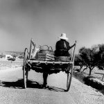 Impressionen Formentera 1960-80 Maultier Karren