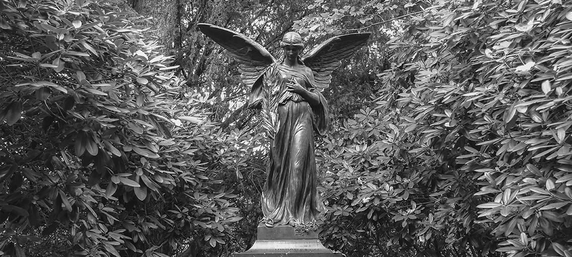 Ohlsdorfer Friedhof Engel Aufmacher