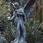 Ohlsdorfer Friedhof Engel Grab Johnson mit roter Rose