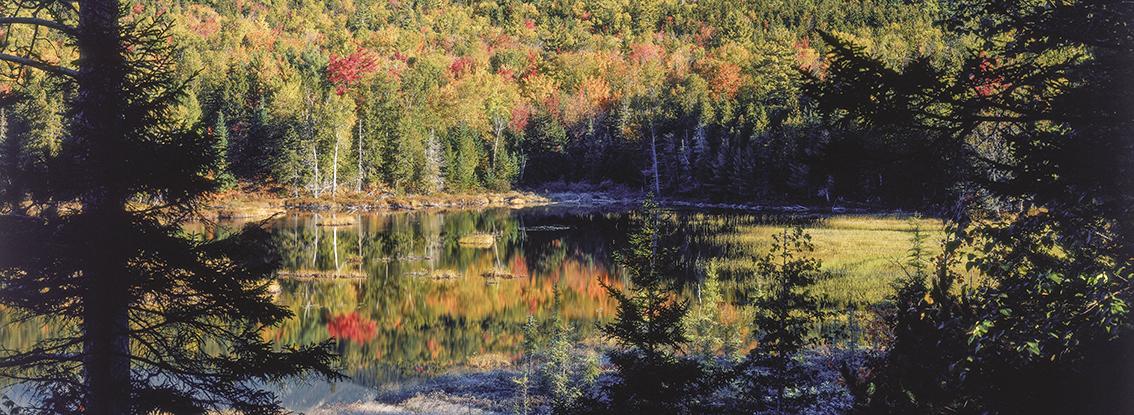 Indian Summer - Foliage - Herbst in Neuengland USA Indian Summer