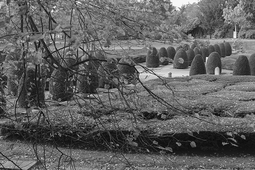 Ohlsdorfer Friedhof Alt Hamburgischer Friedhof