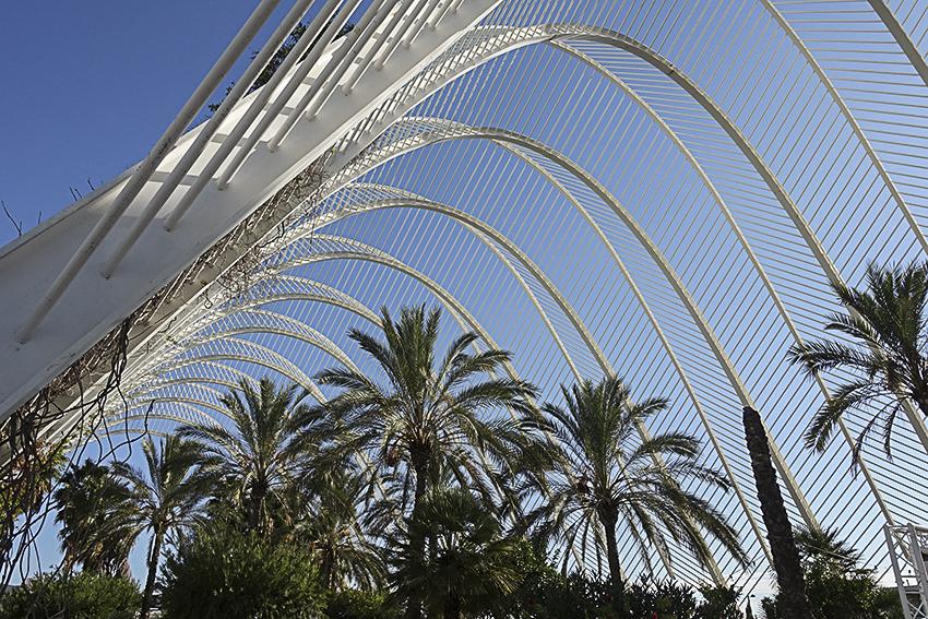 Palmenarcade Valencia, Stadt der Künste und der Wissenschaften